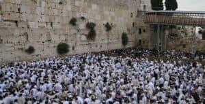 תפילה בכותל צילום חדשות הכותל המערבי
